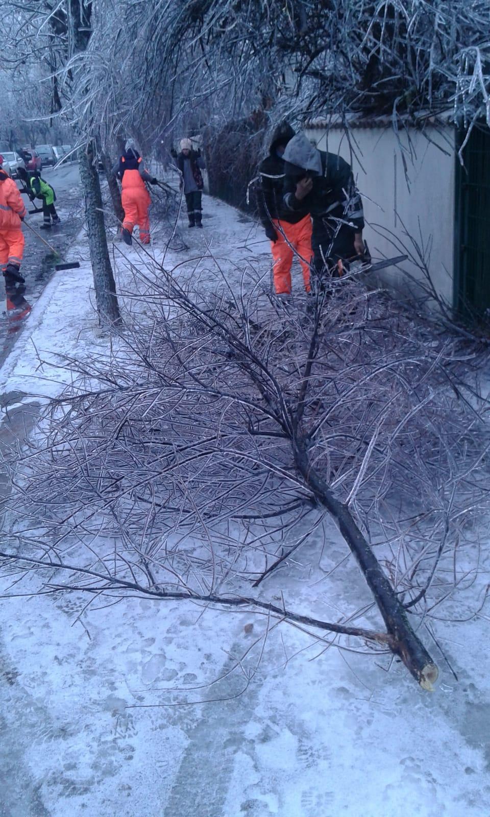 În Sectorul 1 se intervine intens pentru înlăturarea  efectelor condițiilor meteo extreme